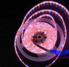LED软灯带 5050RGBW滴胶防水60灯