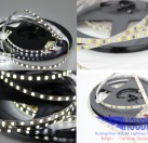 DC12V 2835 120 LEDS 5mm led strip, new type for decorated 2835 120 led 5mm