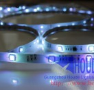 Addressable ICWS2811 30/LED SMD5050 12V LED strip light
