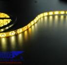 LED软灯带低压12V滴胶防水120灯黄金光