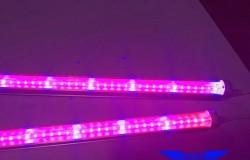 LED植物补光灯全光谱 LED植物生长灯管防水 LED植物灯管 T8分体